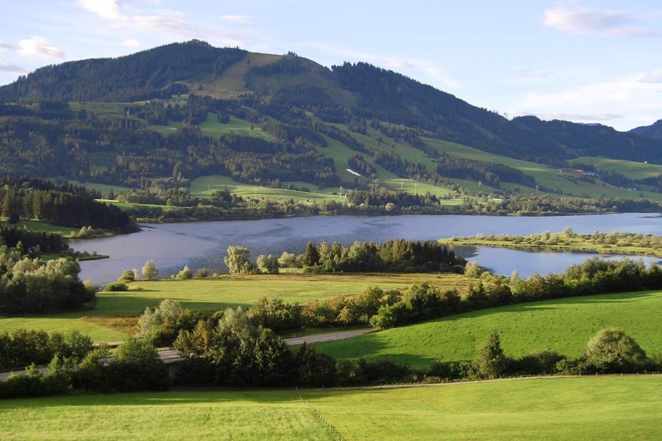 Grüne Landschaft an einem See
