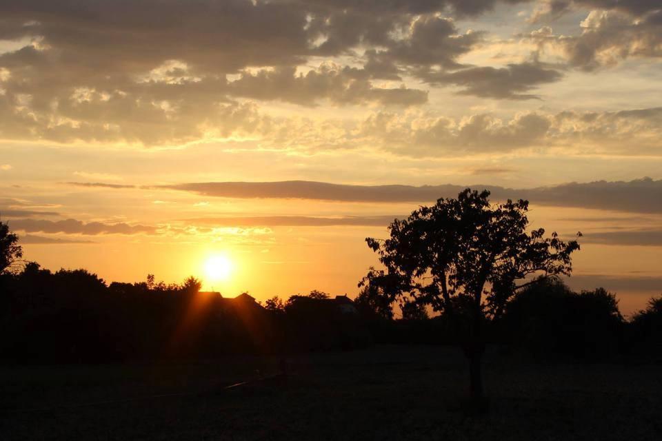 Landschaft orange gefärbt im Sonnenuntergang