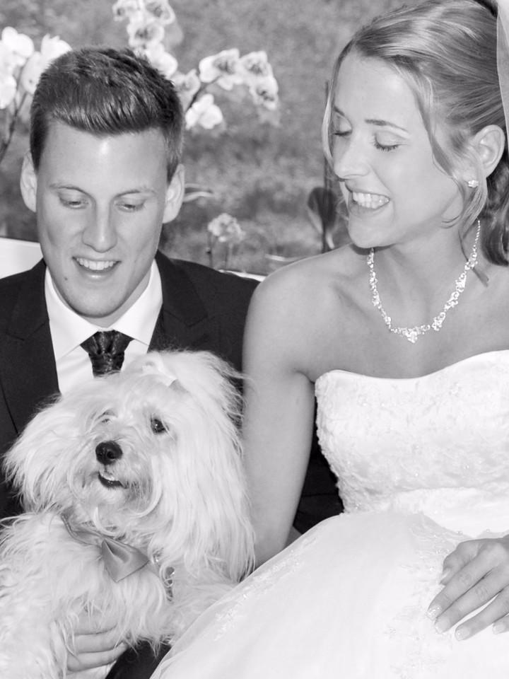Brautpaar und ihr Hund