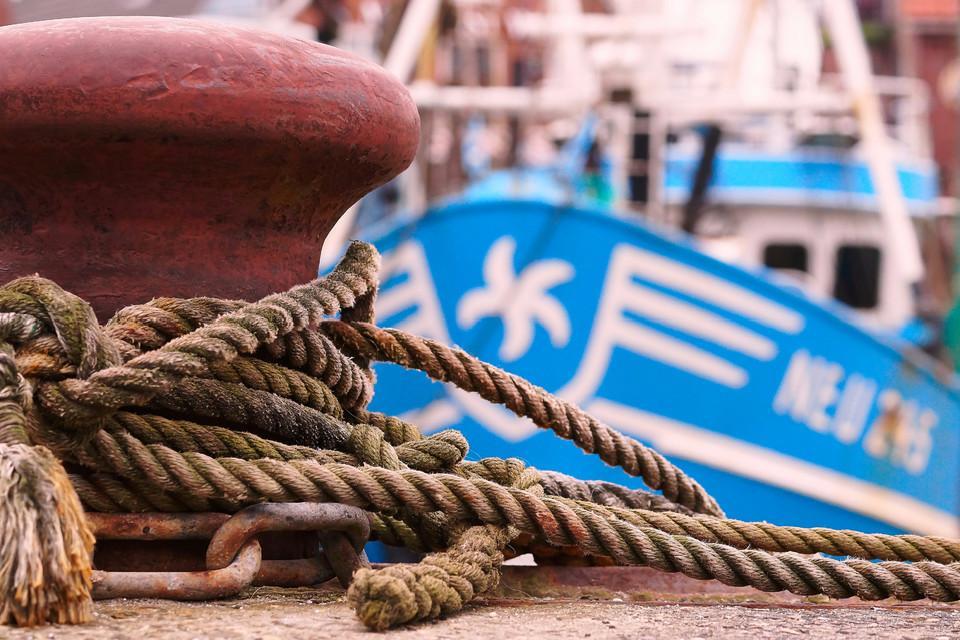 Nahaufnahme am Hafen