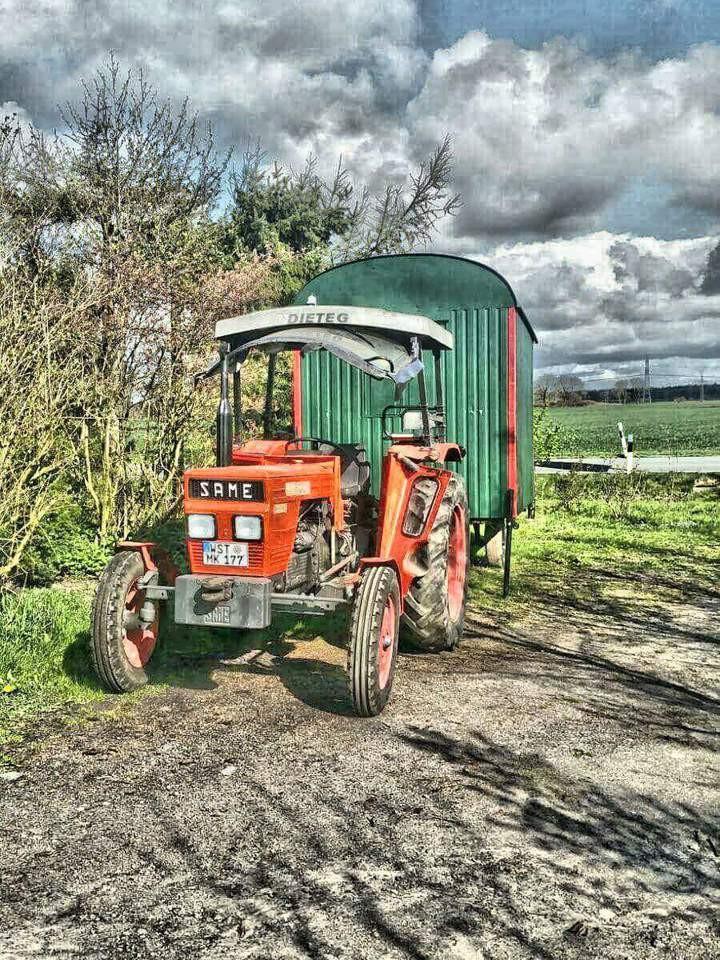traktor, feldarbeiten, frühling