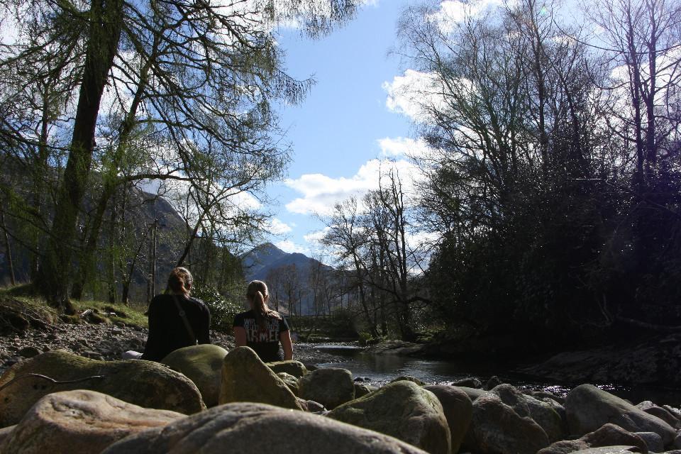 Freunde, Wald, Natur
