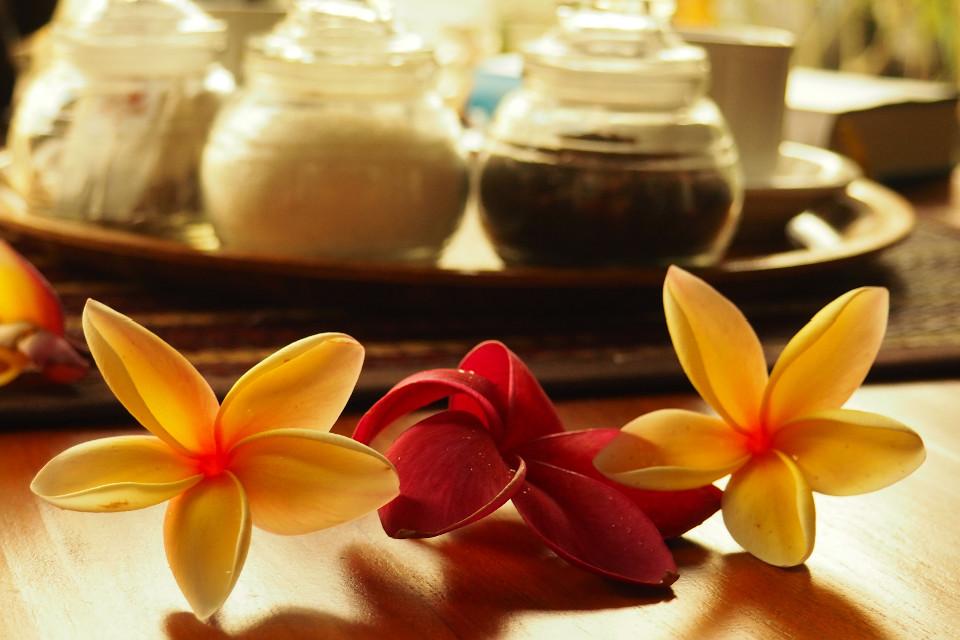 Urlaub, Bali, schönen Blütenhaben, Blumen