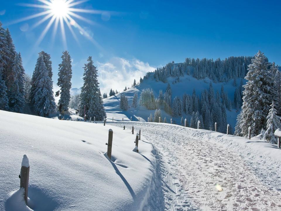 Winter, Schön, Landschaft, sonnig, Tag