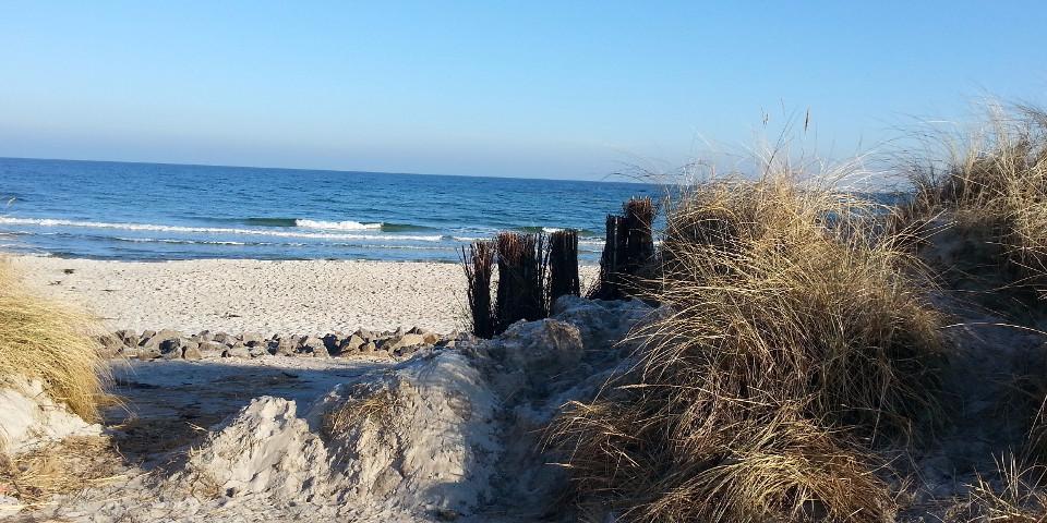 Strand, Sand, Dünen, Früh, Frühling