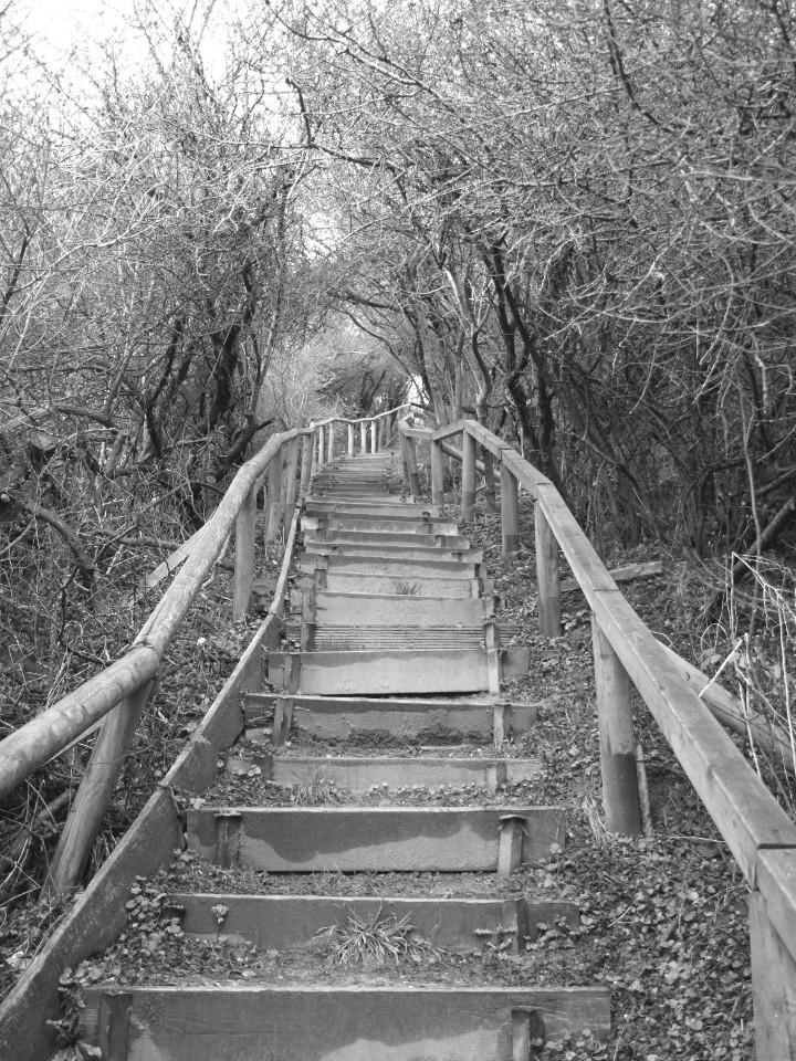 Treppe, Hügel, unheimlich, monochrome
