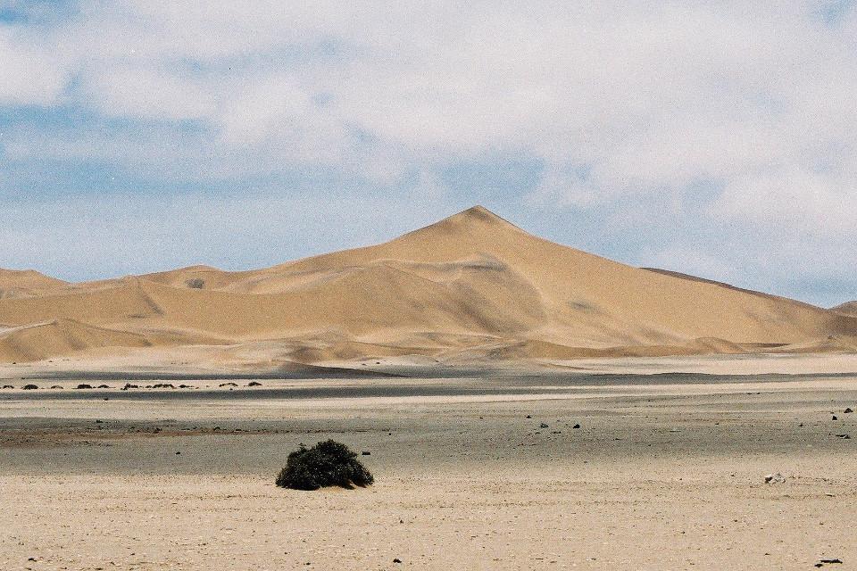 Landschaft, Wüste, Namibia, Himmel, Düne, Baum