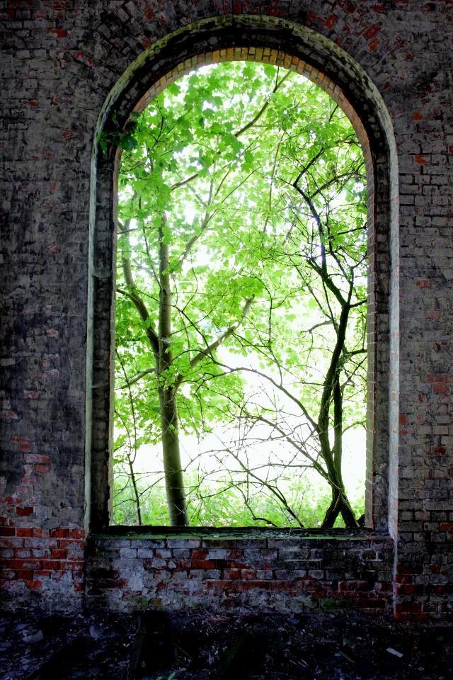 Dömitz, Elbe, Fenster, Ziegelsteine, Grün, Frühling